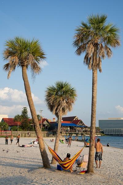 Am Strand von Old Tampa Bay