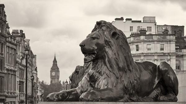 Löwe auf dem Trafalgar Square